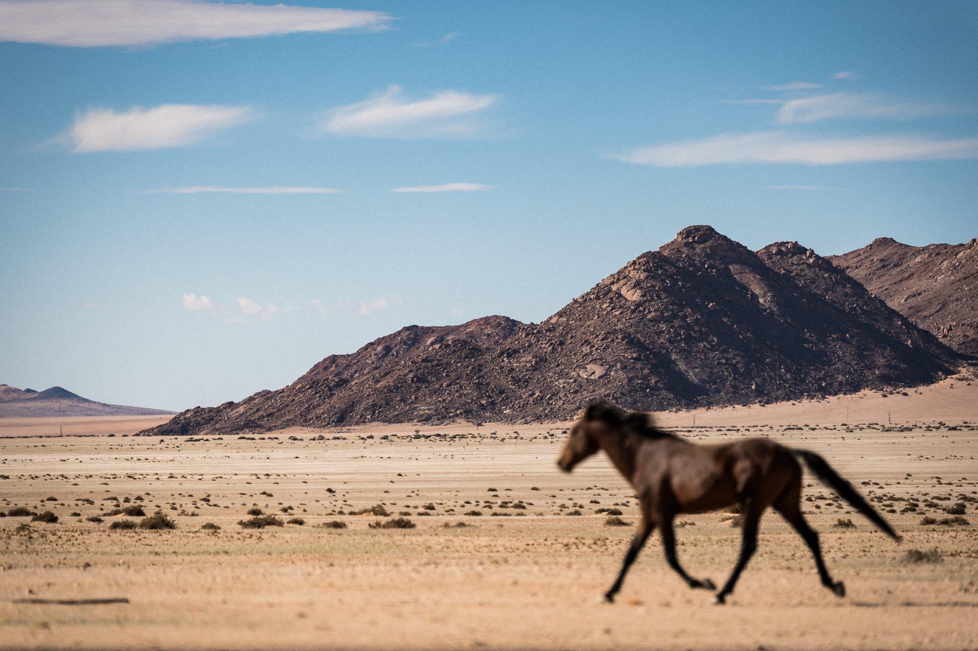 waltsmedia-namibia-road-trip.travel-afrika-portrait-126