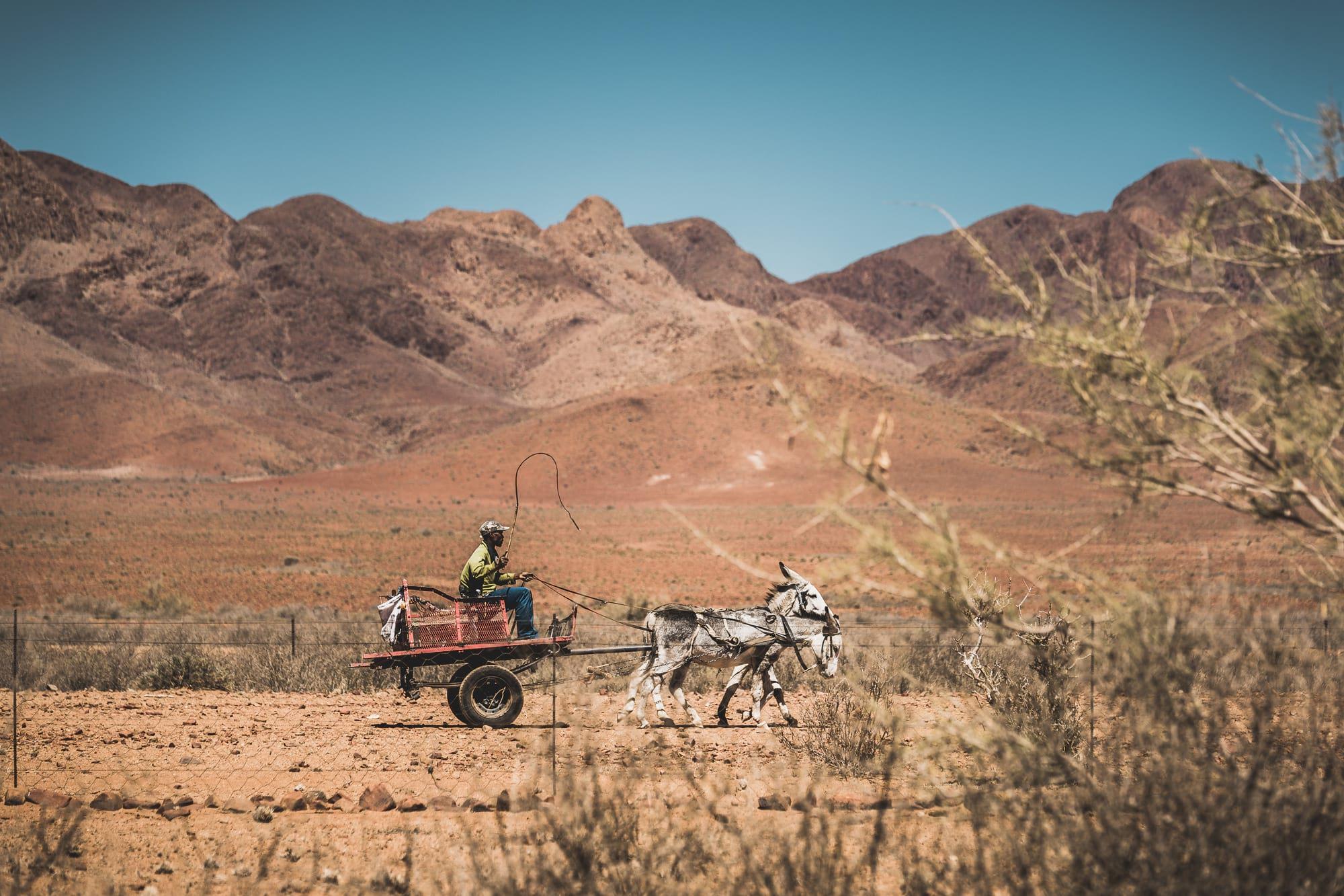 waltsmedia-namibia-road-trip.travel-afrika-portrait-134