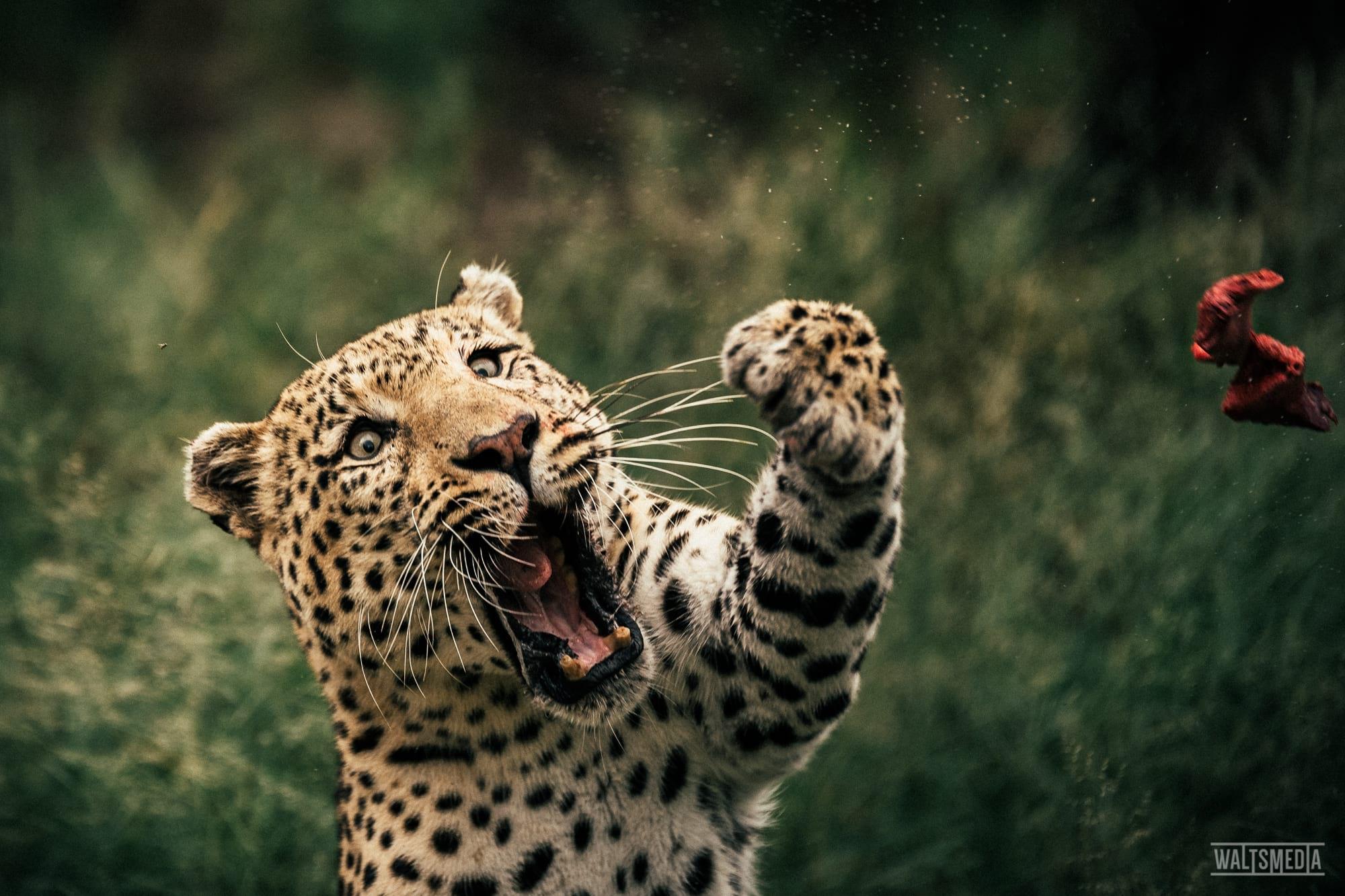 waltsmedia-namibia-travel-portrait-100