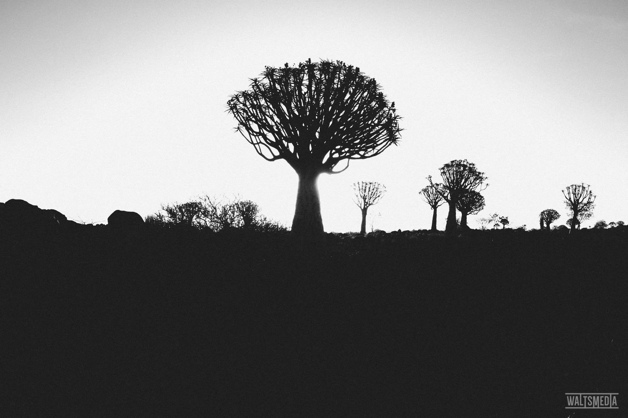 waltsmedia-namibia-travel-portrait-9