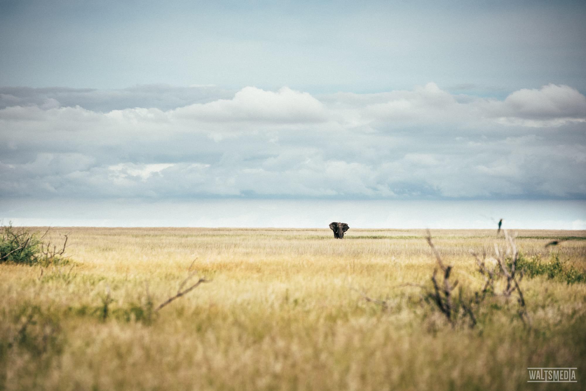 waltsmedia-namibia-travel-portrait-94