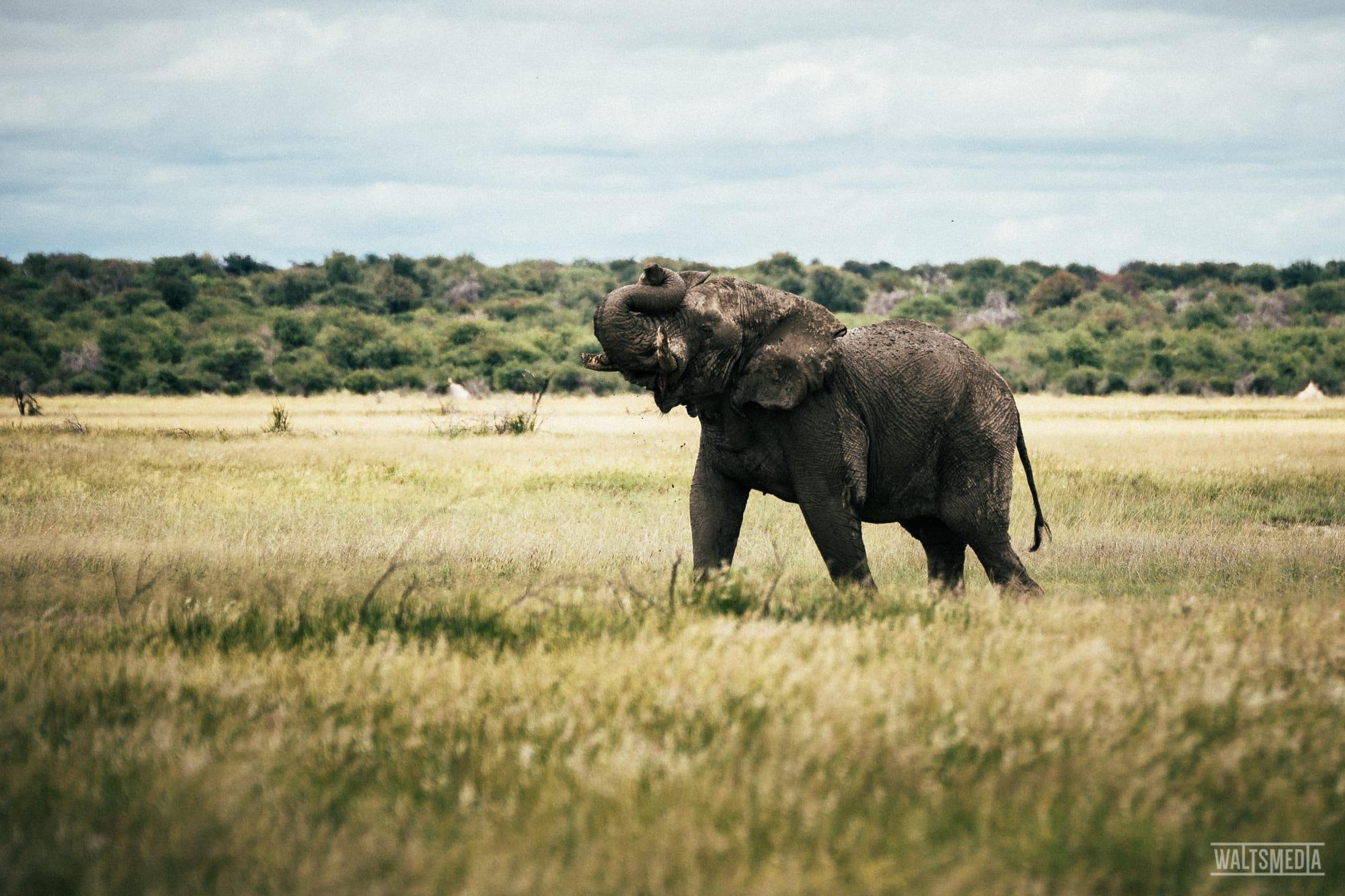 waltsmedia-namibia-travel-portrait-95