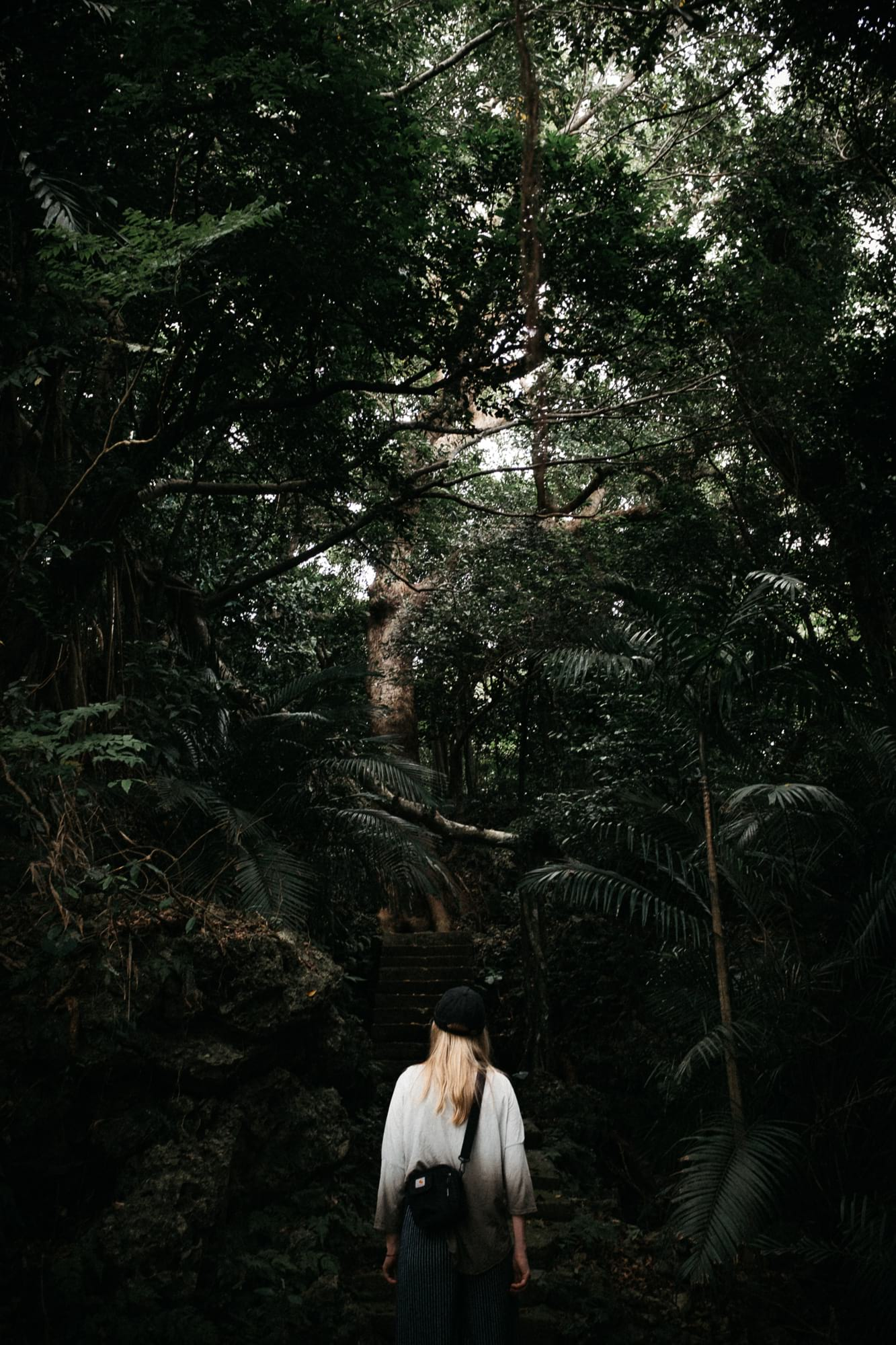 waltsmedia-portrait-taiwan-taipeh-travel-reise-53