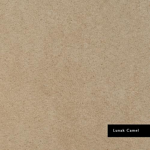 Lunak-Camel